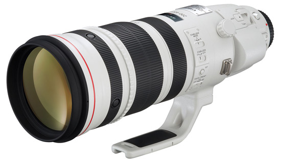 Canon EF 200-400mm f/4 IS L